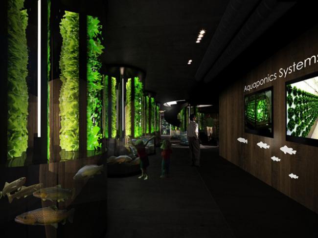 expo2015 pavillon belgique