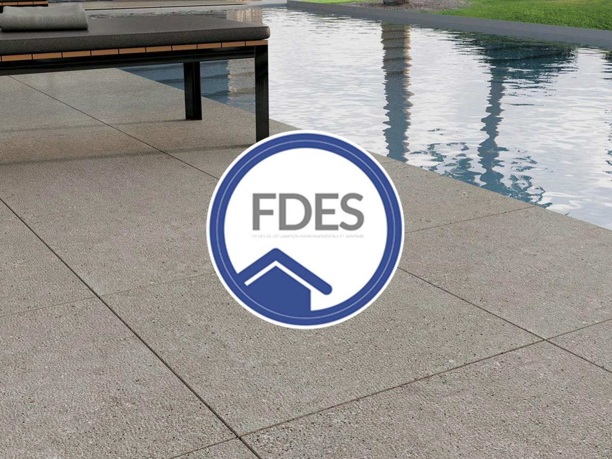 FDES – Scheda di Dichiarazione Ambientale e Sanitaria